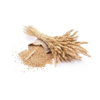 Stockage de céréales - Comparelend